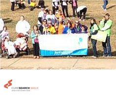 2013 Charlotte CureSearch Walk!