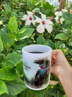Montenegro, Mugs, Coffee, Tableware, Kaffee, Dinnerware, Tumblers, Tablewares, Cup Of Coffee