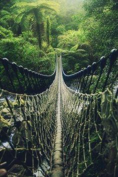 Begin to adventure - by Hanson Mao - #taiwan
