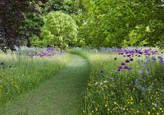 jardin sans entretien : réduire les tontes