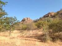 Amazing African Game Reserve for sale! Added more photos. Water Resources, Game Reserve, Types Of Soil, Zebras, Rocky Mountains, More Photos, Wildlife, African, Amazing