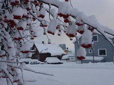 Winter in Tromsø, Norway