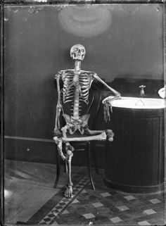 """""""Portrait of an Articulated Skeleton on a Bentwood Chair"""", circa 1900, unknown photographer."""