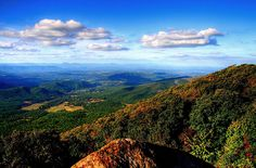 Did we mention Atlanta is only 90min from the North GA mountains and the Appalachian Trail?