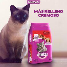 Whiskas Mexico - ¿Cuánto ha disfrutado las nuevas empanaditas con más relleno ?