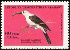 Sickle-billed Vanga stamps - mainly images - gallery format