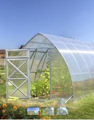STRONG & NICE – Drivhuse – Bjarne's frø og planter
