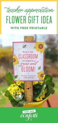 "This DIY ""Bloom in your Classroom"" Flower Teacher Gift Idea is such a sweet gift for teacher appreciation week or the end of the year. Just attached the printable tag to a ruler and stake it in any small potted plant! Such a unique way to say thank you to your teachers! #teachergift #teacherappreciation #printabletag #thankyou #JustAddConfetti"