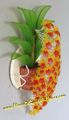 Orchidée Dendrobium Aggregatum                                                                                                                                                                                 Plus