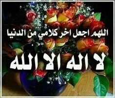 لا اله الا الله. .. محمد رسول الله