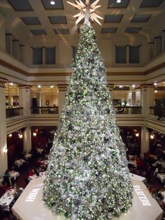 christmas tree, macy's, chicago.  I miss the Marshall Fields green shopping bags.