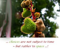 ... #choices are not subject to #time ~ but rather to #space ...!