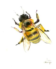 Honey Bee, Original watercolor painting 8 X 10 in bee lover art, animal art bees honey making