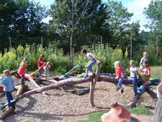 Natural Playscapes Sarah Morrison    Pinned 1 year ago from springzaad.nl