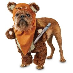 Star+Wars+Ewok+Illusion+Dog+Costume+-+Let+your+canine+join+in+on+cosplay+or+Halloween+fun+with+the+Star+Wars+Ewok+Illusion+Dog+Costume.+Whether+they're+joining+in+on+your+Rebel+Alliance+or+leading+their+own+Ewok+Village,+this+costume+is+sure+to+be+a+hit. - https://www.petco.com/shop/en/petcostore/product/star-wars-ewok-illusion-dog-costume