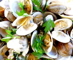 YUM, Linguini with Clams! www.healthykidsco... Come see what we are up to on Facebook and LIKE us if you like what you see! www.facebook.com/...