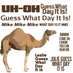 Days of the week quotes on Pinterest | Hump Day Camel ...