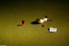 30 fotos da vida secreta dos objetos
