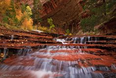 Arch Angel Falls, along the left fork of North Creek in Zion.