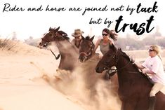 Image captured on our horse riding holiday in Namibia. Horse Meme, Horse Quotes, Horse Sayings, Bareback Riding, Riding Holiday, Horse Riding Clothes, Riding Gear, Riding Quotes, Equestrian Gifts