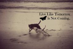 My photograhy. Edited and Taken by me. Using PicMonkey! I love it!!!  North Myrtle Beach.   Live Like Tomorrow is Not Coming.<3