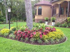 37 Cheap Landscaping Ideas for Your Garden Cheap Landscaping Ideas, Landscaping Around Trees, Outdoor Landscaping, Front Yard Landscaping, Outdoor Gardens, Backyard Ideas, Garden Ideas, Florida Landscaping, Backyard Plants