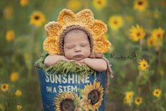 Kimberly G photography  Sunflowers <3 One day