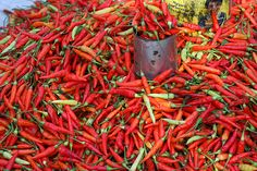 Hot Chili at a market in Bali, Indonesia. Chilis come in different colours and are sold by the can.