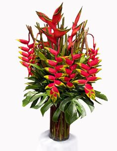 Arranjo Com Heliconia | Riqueza das Flores - arranjos florais presentes Rio de Janeiro e ...