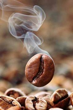 Gourmet Coffee Beans The Magical Flavor Coffee World, Coffee Corner, Café Chocolate, Chocolate Powder, Chocolate Protein, Coffee Pictures, Coffee Photography, Food Photography, Coffee Drinkers