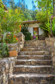 Garden Stairs | Ancash | Peru | Photo By Chris Taylor