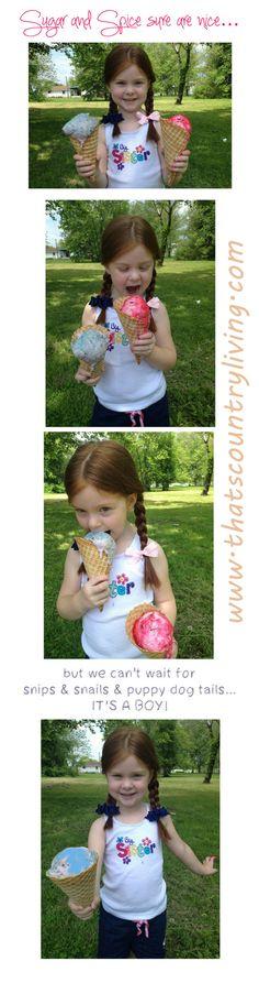 Ice Cream Gender Reveal!