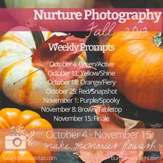Get inspired and share in the beauty of photography this fall with the autumn edition of the Nurture Photography Challenge!