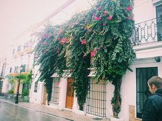 Marbella, Old Town