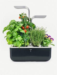 VERITABLE - Smart Garden indoor planter | Selfridges.com