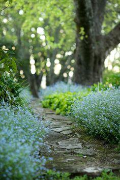 Follow your path. glen allsop