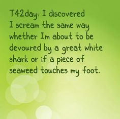 T42day