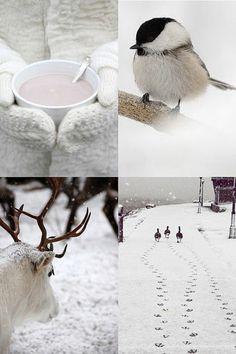 Le paysage d 39 hiver en 80 images magnifiques for Image fond ecran ordinateur gratuit
