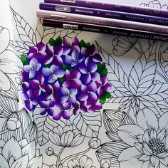 Image may contain: flower and plant Colored Pencil Tutorial, Colored Pencil Techniques, Drawing Techniques Pencil, Coloring Book Art, Colouring Pages, Adult Coloring Pages, Coloring Tips, Blending Colored Pencils, Johanna Basford Coloring Book