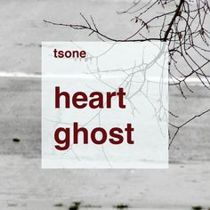 "Tsone - ""Heart Ghost"" (ambient, drone, experimental, electroacoustic)"