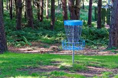 Free Image on Pixabay - Disc Golf, Frisbee Game, Frisbee