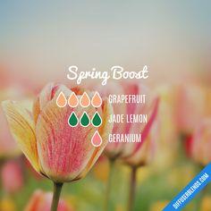 """""""Spring Boost"""" Diffuser Blend- Grapefruit, Jade Lemon and Geranium"""