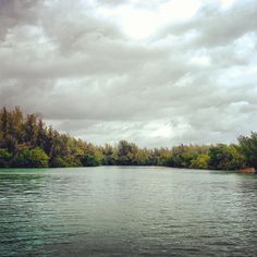 Florida's largest urban park, Oleta River is located on Biscayne Bay in the busy Miami metropolitan area. Although it offers a variety of recreational opportunities, the park is best known for miles of off-road bicycling trails, ranging from novice trails to challenging trails for experienced bicyclists.