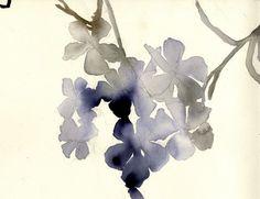 James w floral  Luli Sanchez