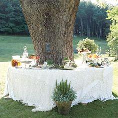 Small Family Wedding Ideas | Dream Wedding For You: Cheap Wedding Ideas For Brides