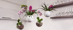 Závesné kvetináče Planter Pots, Vase, Design, Home Decor, Decoration Home, Room Decor, Flower Vases, Interior Design, Vases