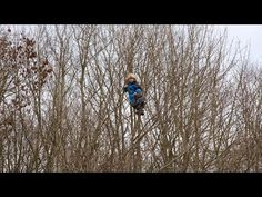 Kids Gone Wild: Denmark's Forest Kindergartens - YouTube