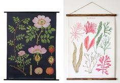 Happy Interior Blog: Greens For Your Wall