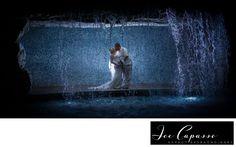 Marco Island Marriott Wedding from Naples Wedding Photographer Joe Capasso