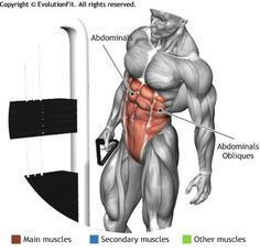 ABDOMINALS -  CABLES SIDE BEND